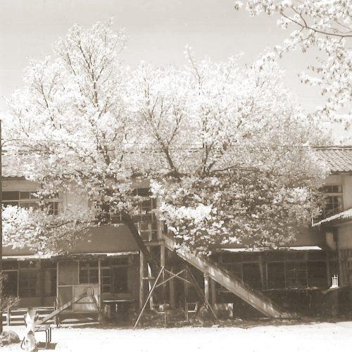 昔の保養園